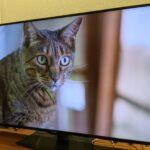 これが最後の液晶テレビになるのか!?シャープ8Kチューナー非搭載8K液晶テレビ「8T-C60BW1」購入しました。